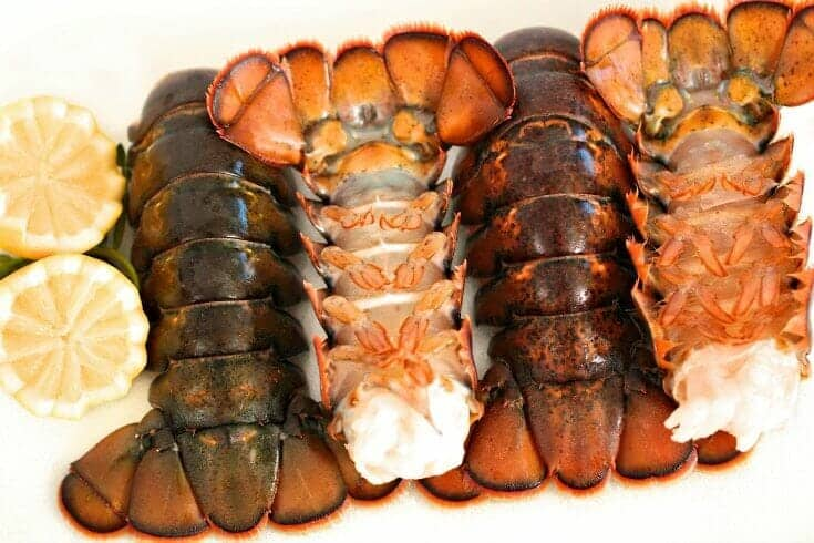 rock lobster tails for sale