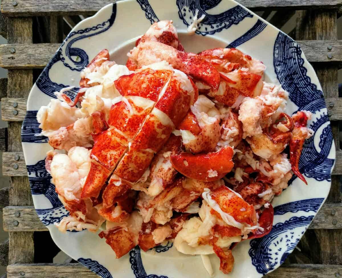 Order Lobster Meat