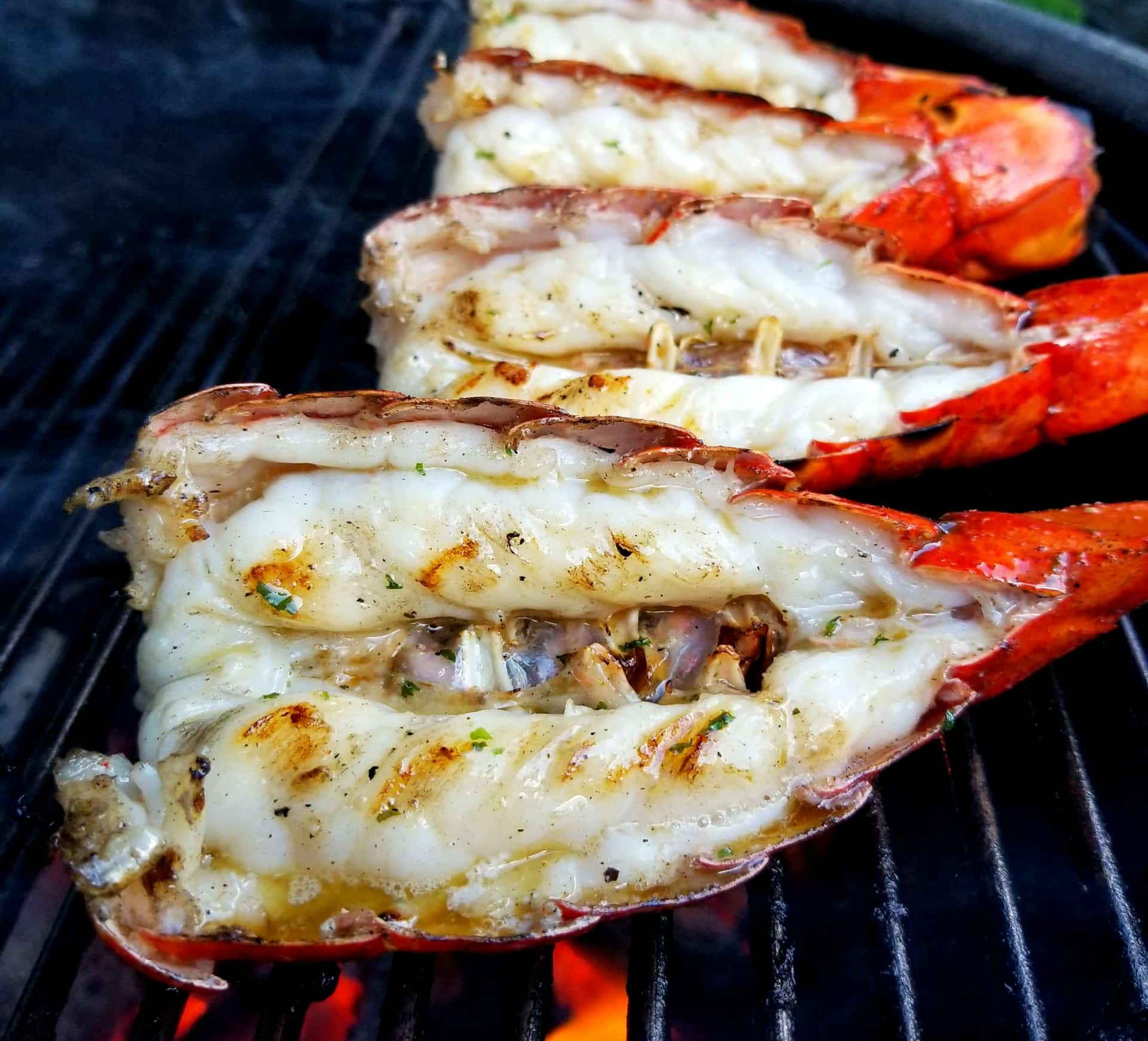 Order Lobster Tails Grill