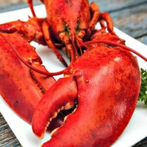 How To Cook The Perfect Lobster Lobsteranywhere Com