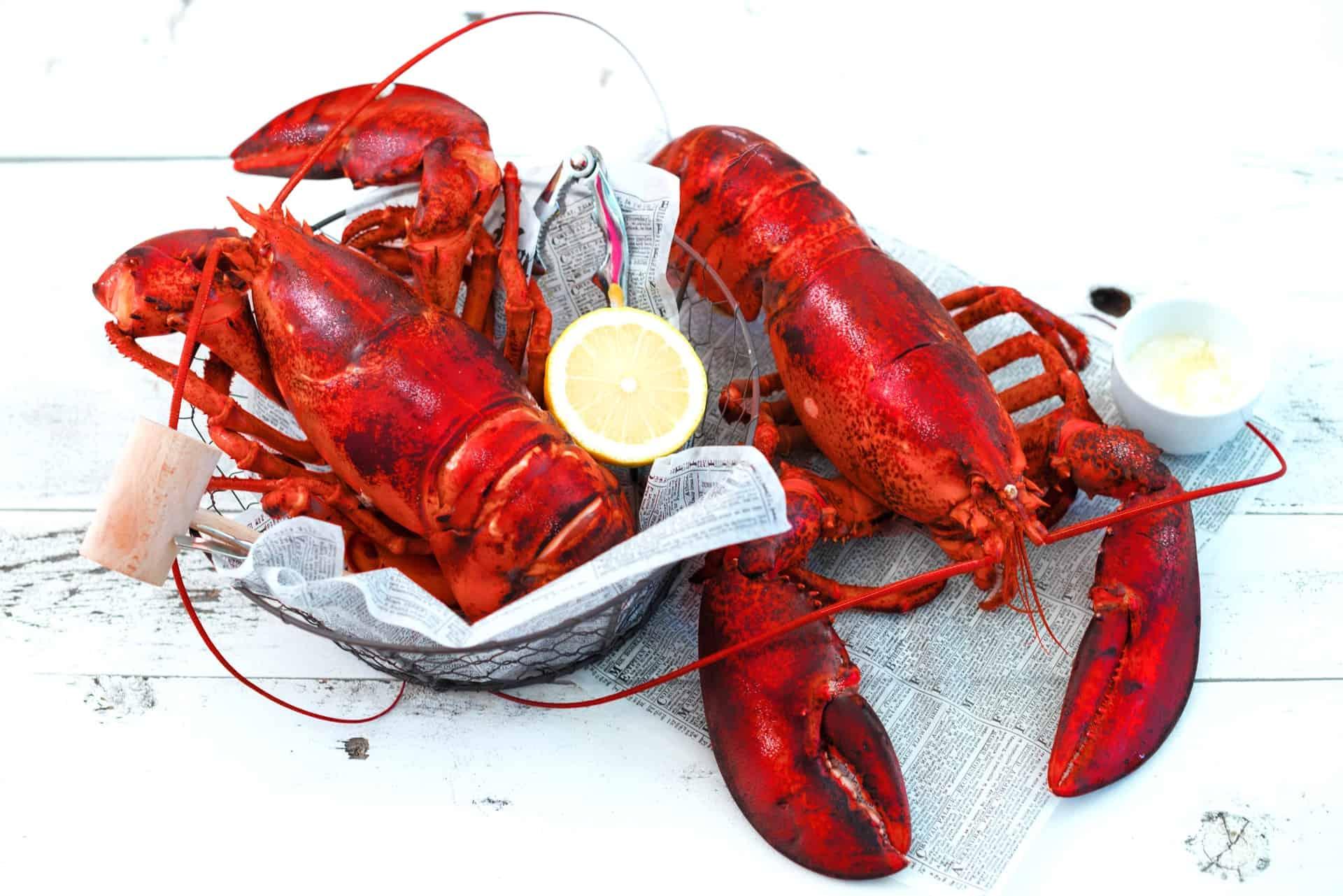 Order Lobster for Dad!