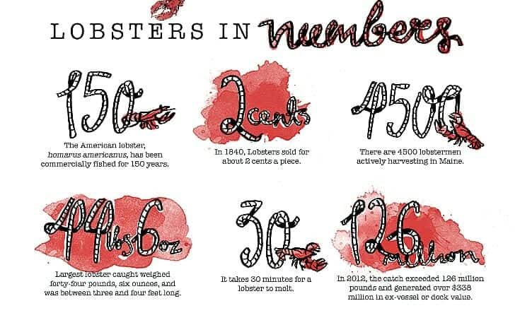 Lobster Facts
