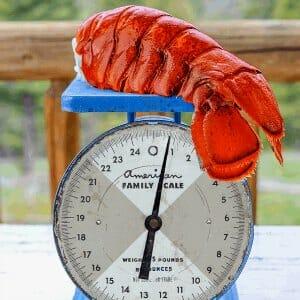 Monster Lobster Tails