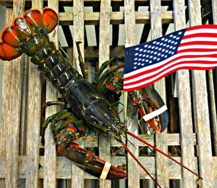 Best Recipes Lobster Grilling