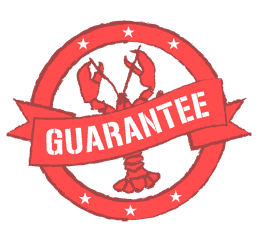 Happy Cracking Guarantee