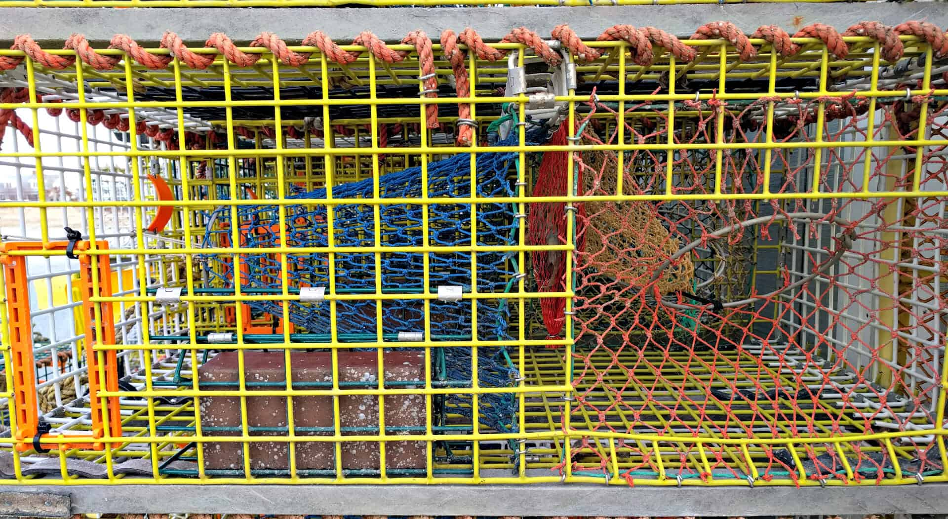 Fill Your Trap With Lobster From Maine All About Lobster Traps