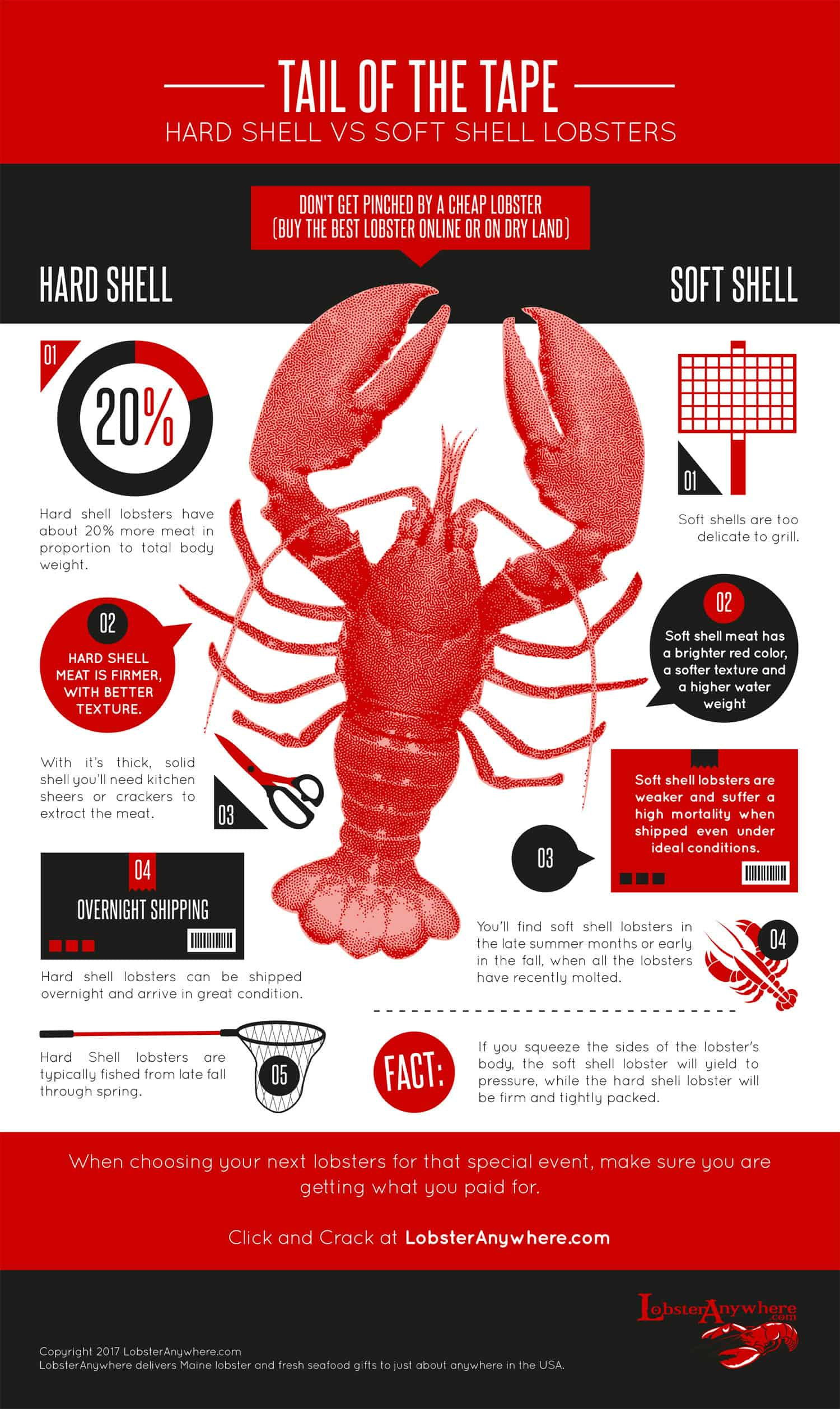 Which is Better: Hard Shell or Soft Shell Lobster