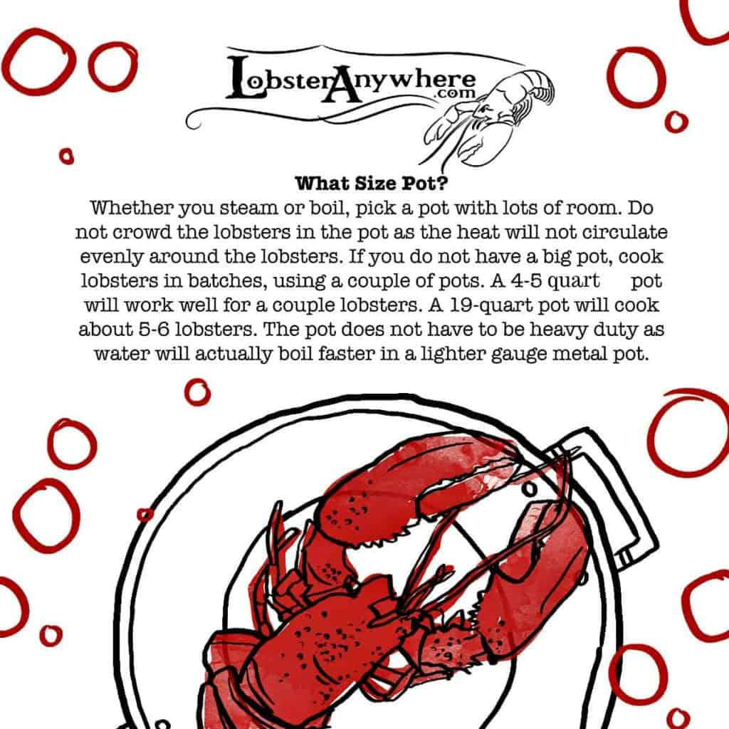 How Big a Pot Lobster