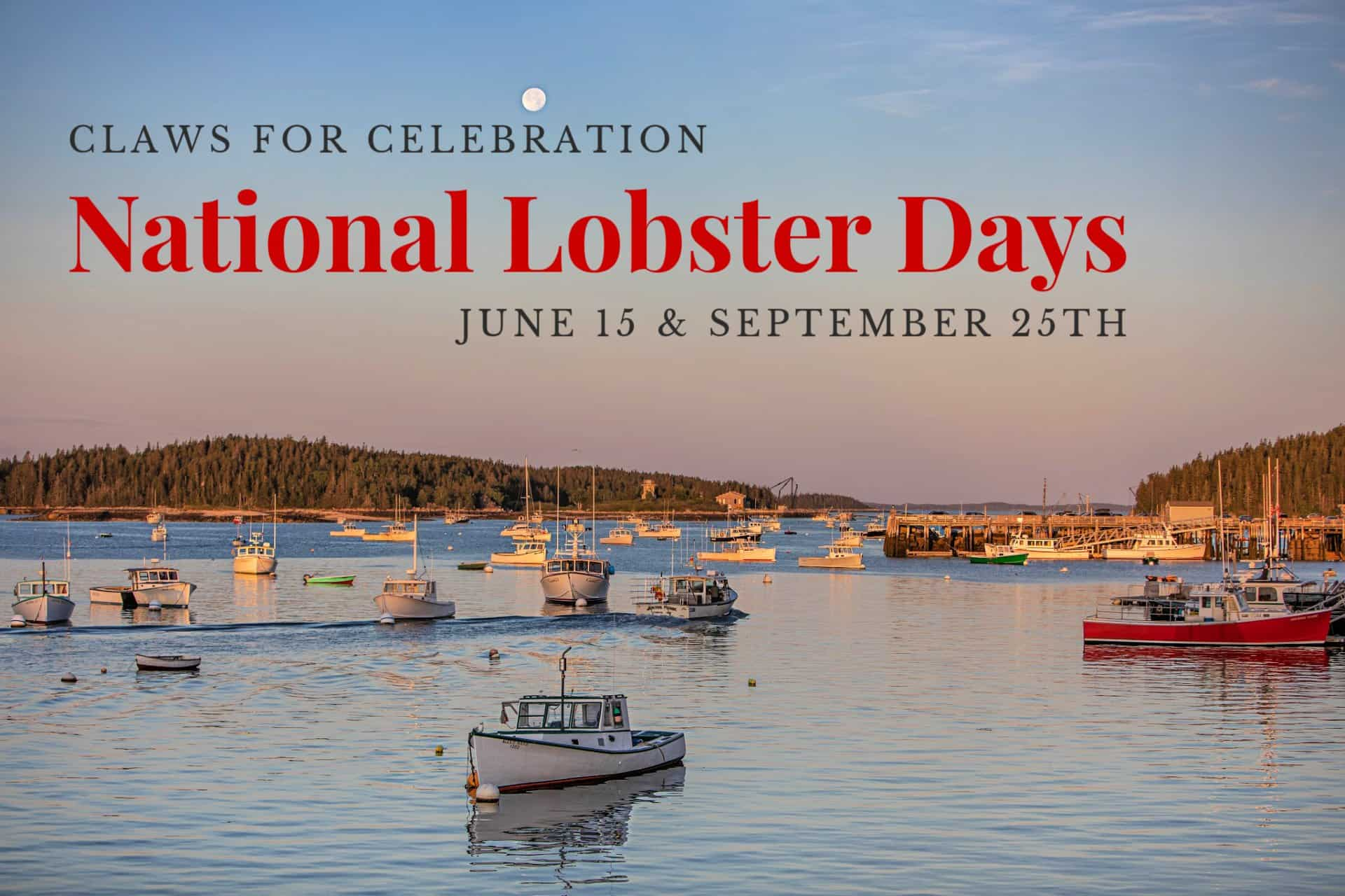 What Day Is National Lobster Day