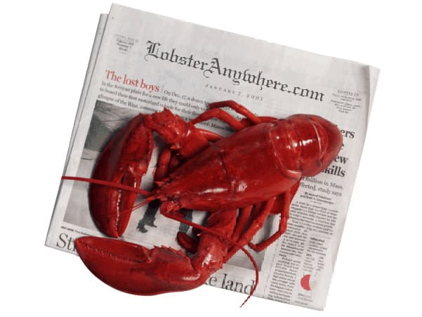 Buy Live Maine Lobster